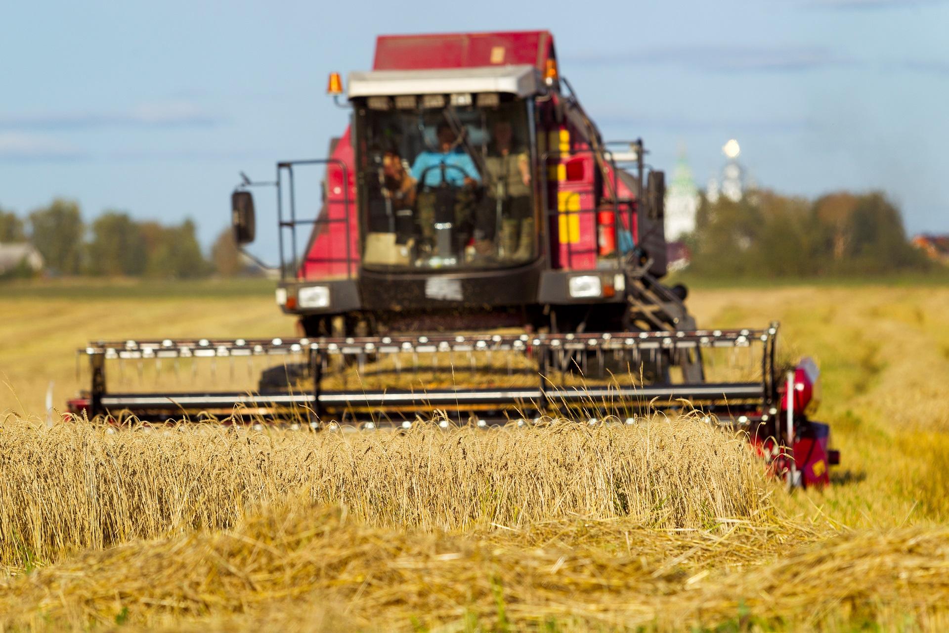 Coperture per l'agricoltura